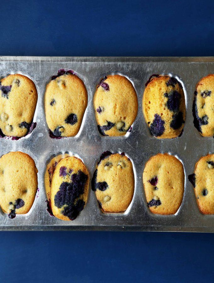Blueberry Cornbread Madeleines